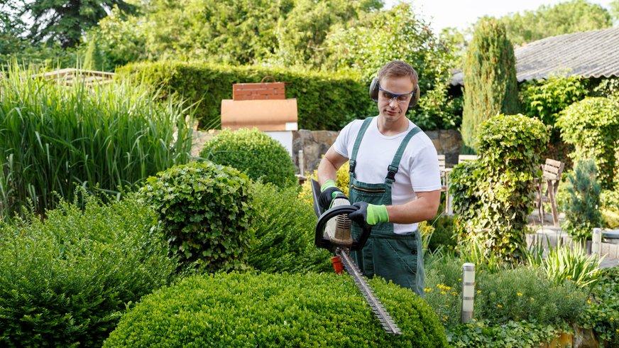 Gartenbau bauh fe - Garten und landschaftsbau bremerhaven ...